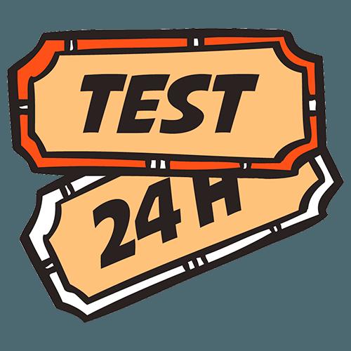 Тестовый доступ